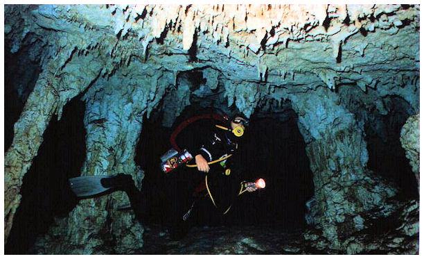 Cozumel Dive Shops/Cozumel Diving & Cenote/Cave Diving