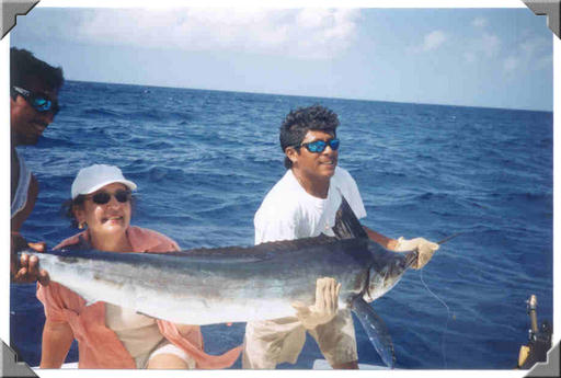 Cozumel mexico fishing photo gallery photos of for Cozumel fishing charters